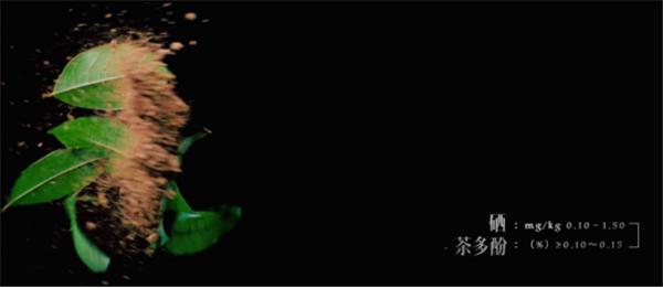 常德擂茶概念片发布推文951.png