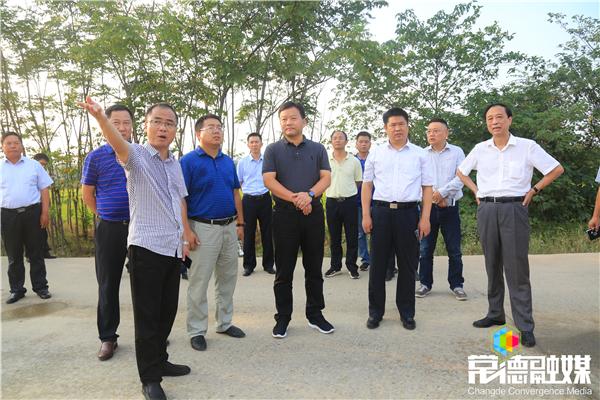 曹立军赴鼎城调研碎石矿坑生态修复工作 以高度负责的态度做好生态修复工作