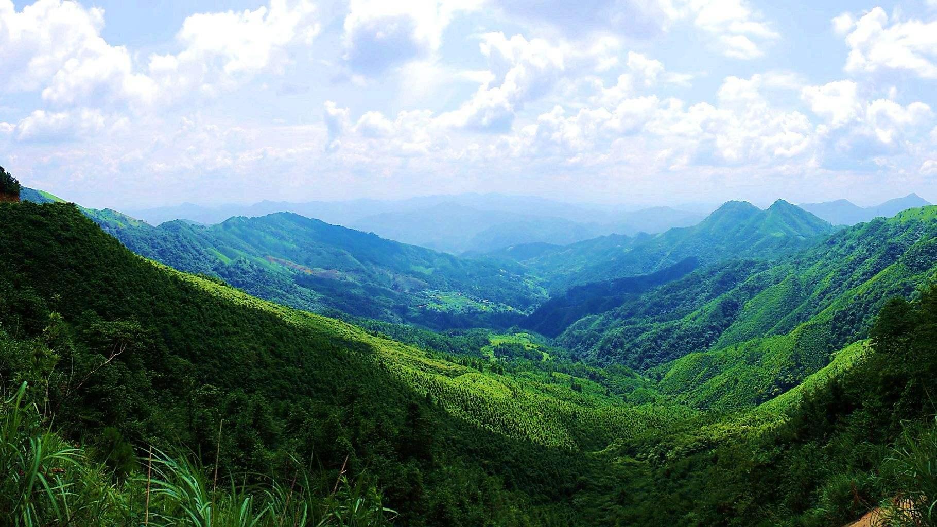 用什么保护我们的绿水青山