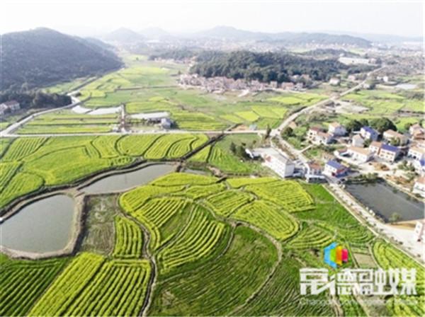 弹指一瞬今胜昔 —— 乡村振兴且看岳阳创建农业产业化特色小镇