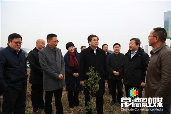 副省长隋忠诚赴临澧县调研产业扶贫