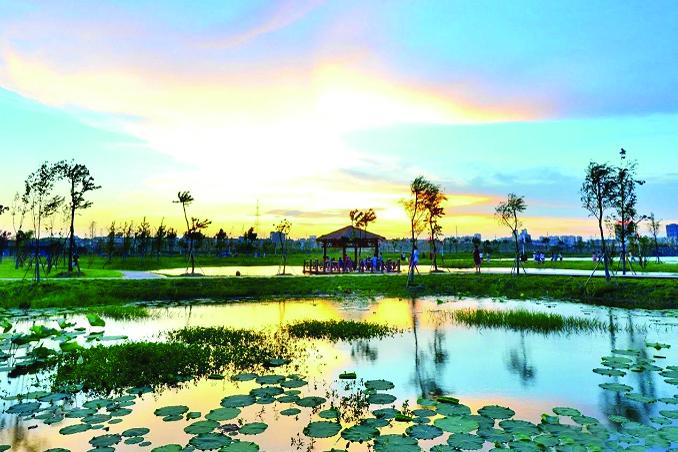 一湖碧水看洞庭丨荆州松滋:生态润笔绘就绿水青山