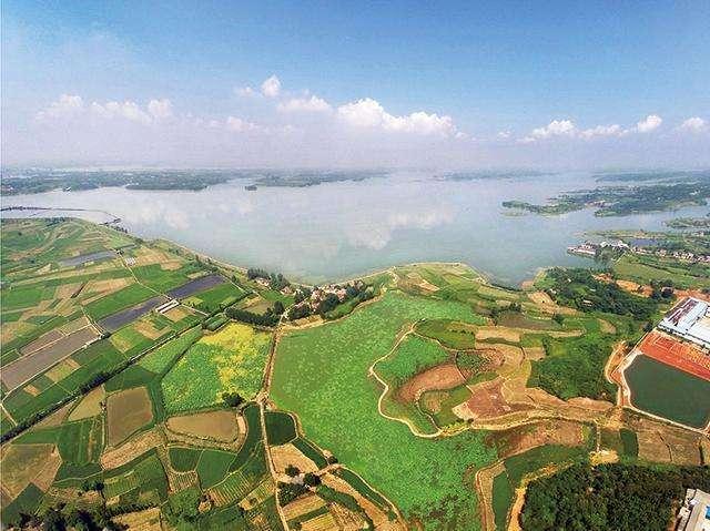 原标题:津市与南科大开展生态环境领域合作 改善窑坡渡断面和西